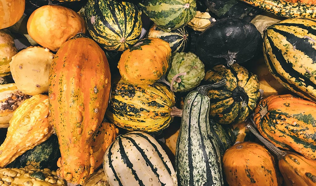 Five Squash Varieties You Should Try This Fall